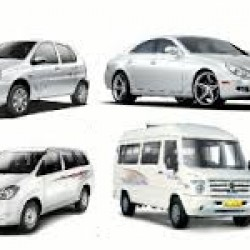 Reliable Travels & Cab Services_image2