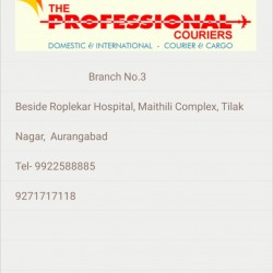 The Professional Courier_image2